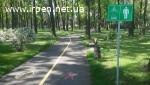 ОСАГО (Автоцивілка), Зеленая Карта, Travel скидки до 30%