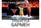 Steake House «Выхухоль» приглашает на работу барменов