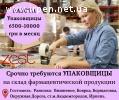 ZEST Outsourcing объявляет набор