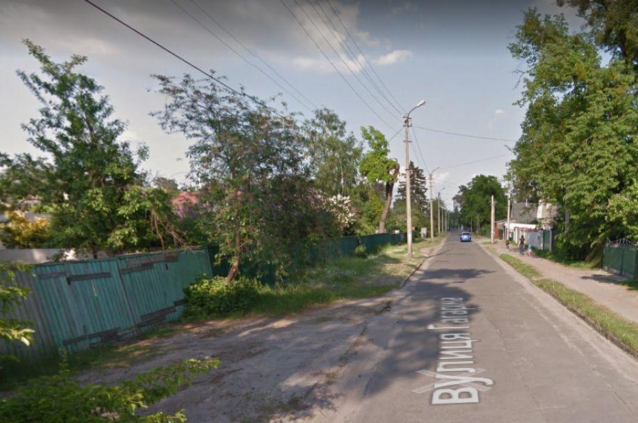Поліція розшукала вбивць пенсіонерів з Ірпеня