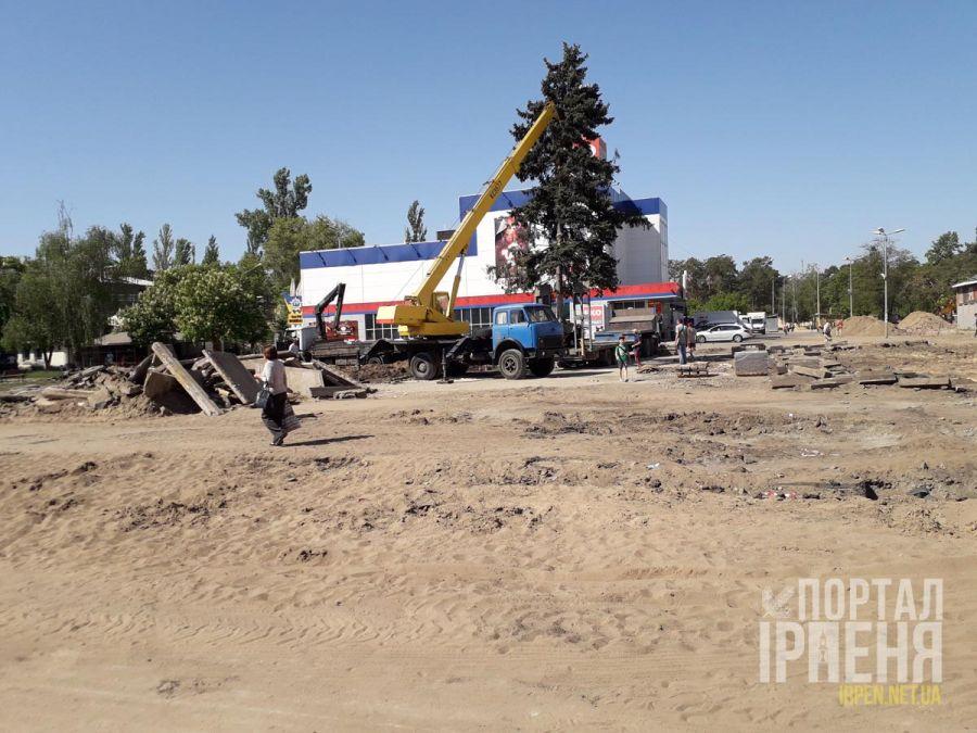 Как выкапывали голубую ель возле «Экомаркета». Видео